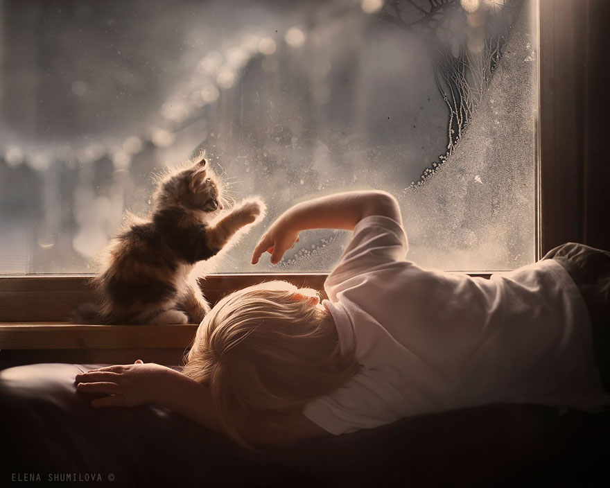 animal-children-photography-elena-shumilova-2-42
