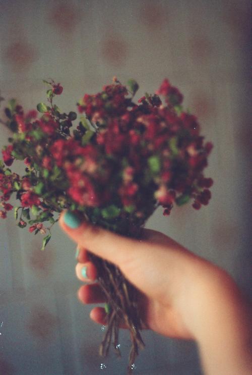 Декор цветами. Маленькие цветы. Идеи для интерьера. woman-delice.com