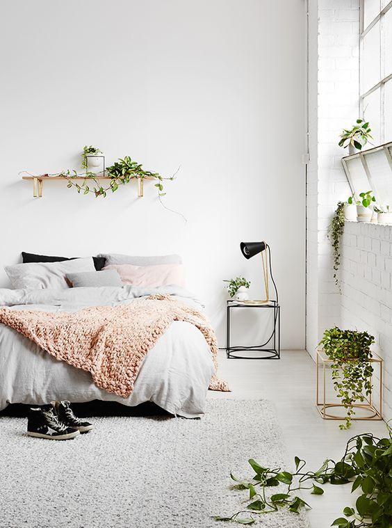 Домашние растения в дизайне интерьера.