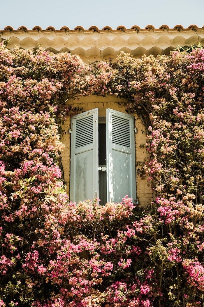 остров Поркероль, лазурный берег, Франция, кот д'азур. Cote d'azur, Porquerolles