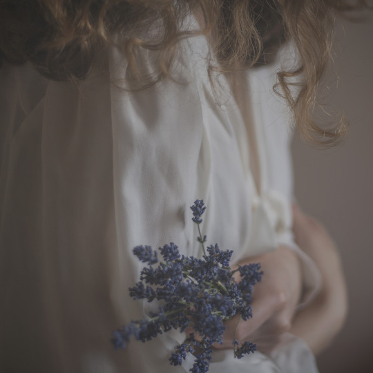 flowers, small bouquet
