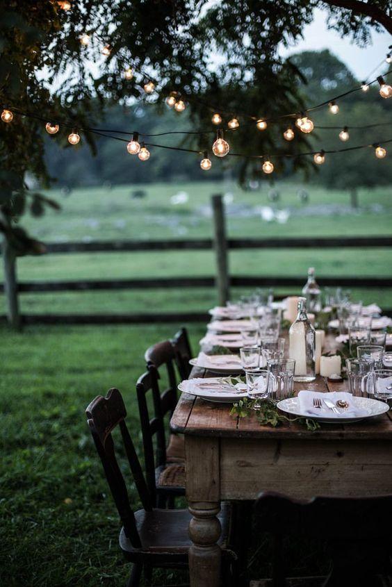 пикник на природе, дачный обед, гирлянда