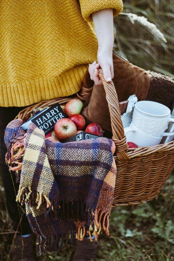 parizhski_picnic9
