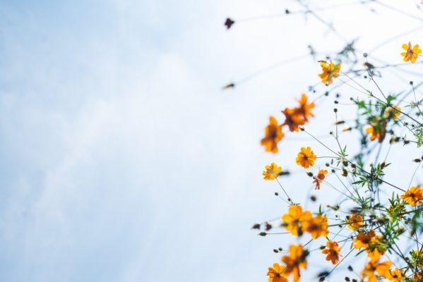 Что делать с повышенной тревожностью: практический гид